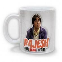 Big Bang Theory Rajesh Muki