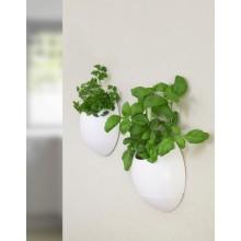 Itsekasteleva Seinäruukku Eco Pod 2-pakkaus