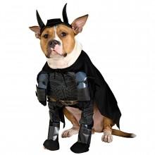 Batman Deluxe Naamiaispuku Koira