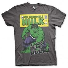 Distressed I Am The Hulk T-paita Harmaa