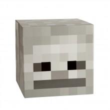 Minecraft Skeleton Head