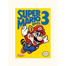 SUPER MARIO BROS. 3 (NES-KANSI) JULISTE