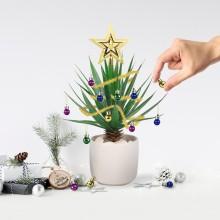 Joulukuusen Koristeet Kasveille