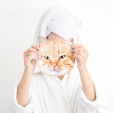 Pyyhkeet Kissa Kasvot