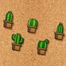Ilmoitustaulunastat Kaktukset 5-pakkaus