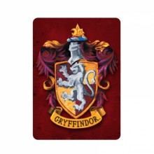 Harry Potter Magneetti Gryffindor