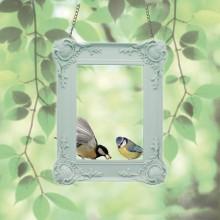 Lintujen SyÖTtÖLaite Kehykset