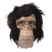 Simpanssi Naamari