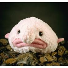 Blobfish Pehmolelu