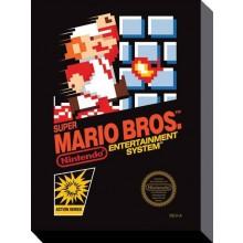 Super Mario Bros Nes Kanvaasi 30X40Cm
