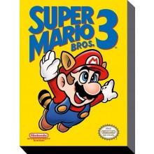 Super Mario Bros 3 Kanvaasi 30X40Cm