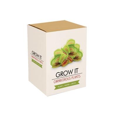 Odla din Egen Köttätande Växt
